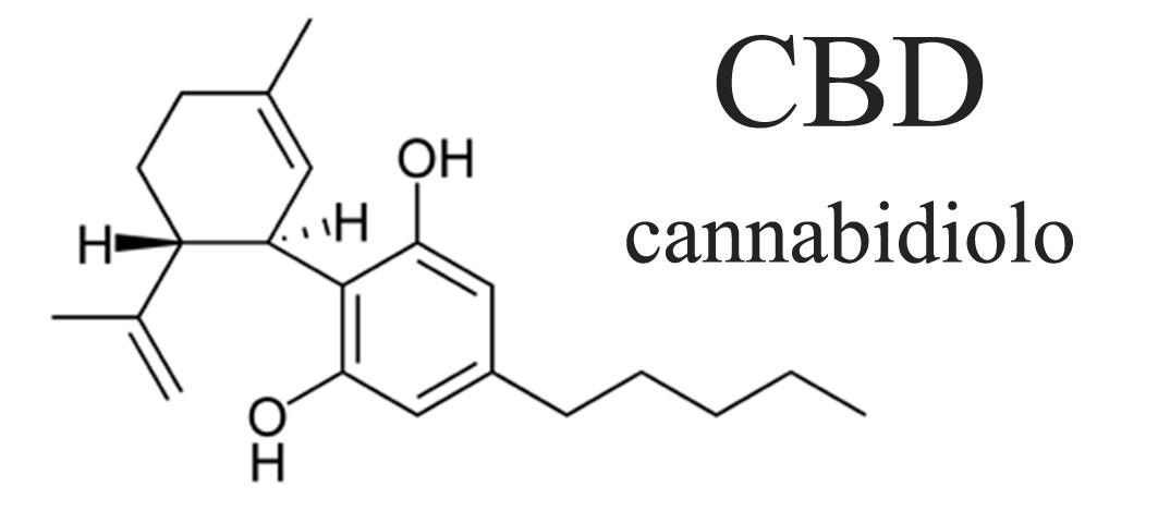 cbd cannabidiolo